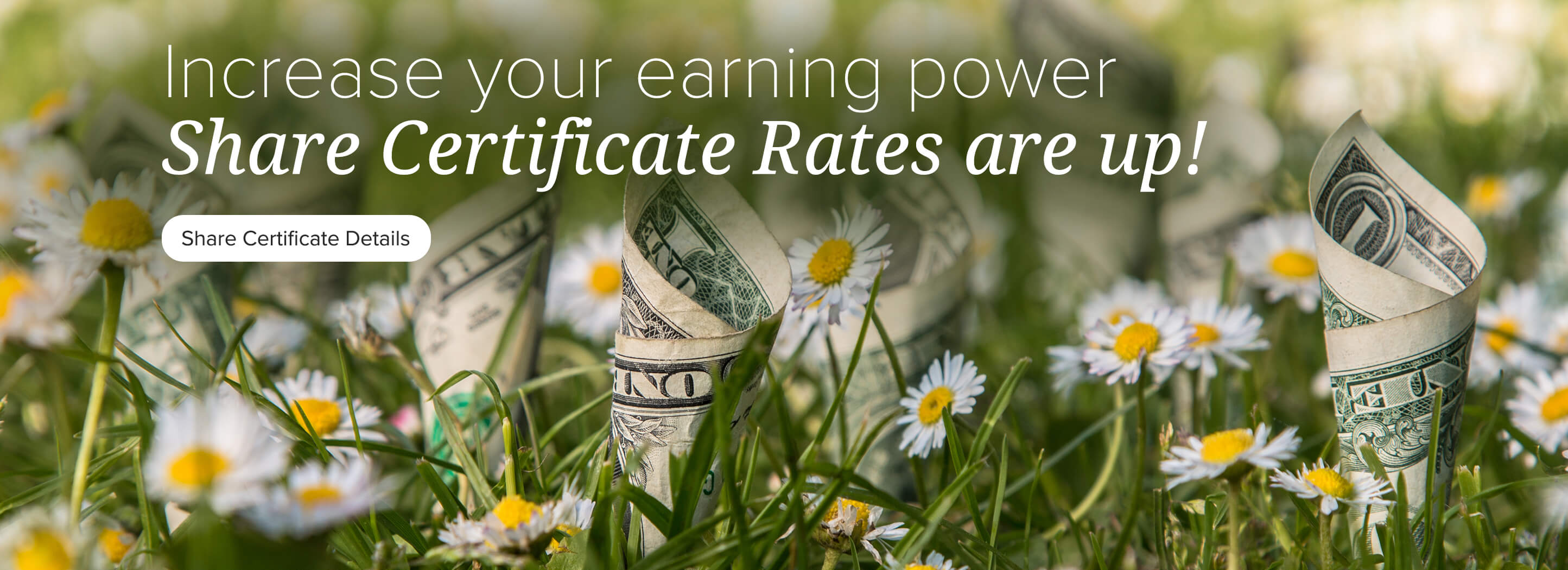 Increase your earning power. Share Certificate Rates are up! Share Certificate Details.