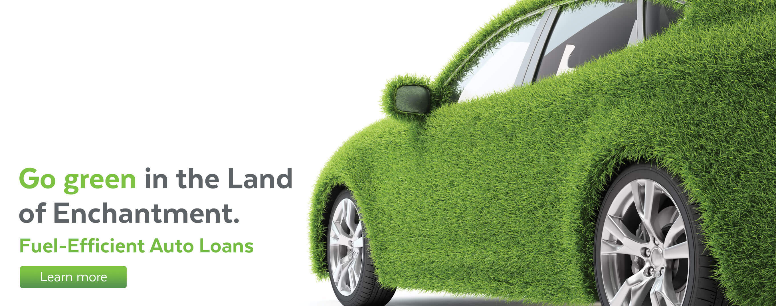 Go green in the Land of Enchantment. Learn more about fuel-efficient auto loans.