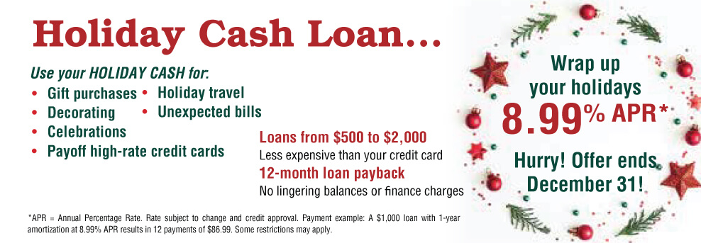 8.99% APR Holiday Loan Sale