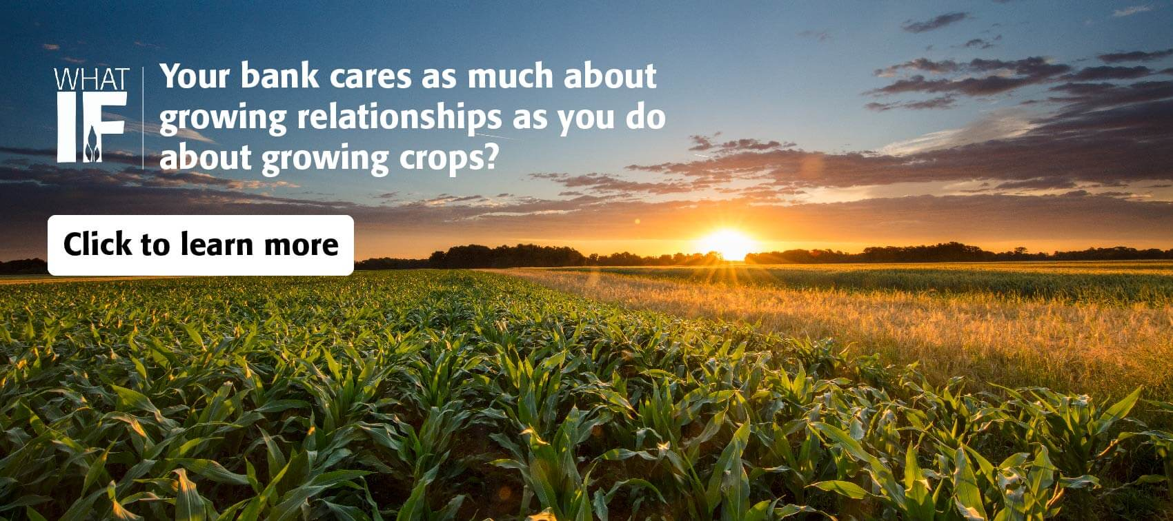 Learn about our agricultural services.