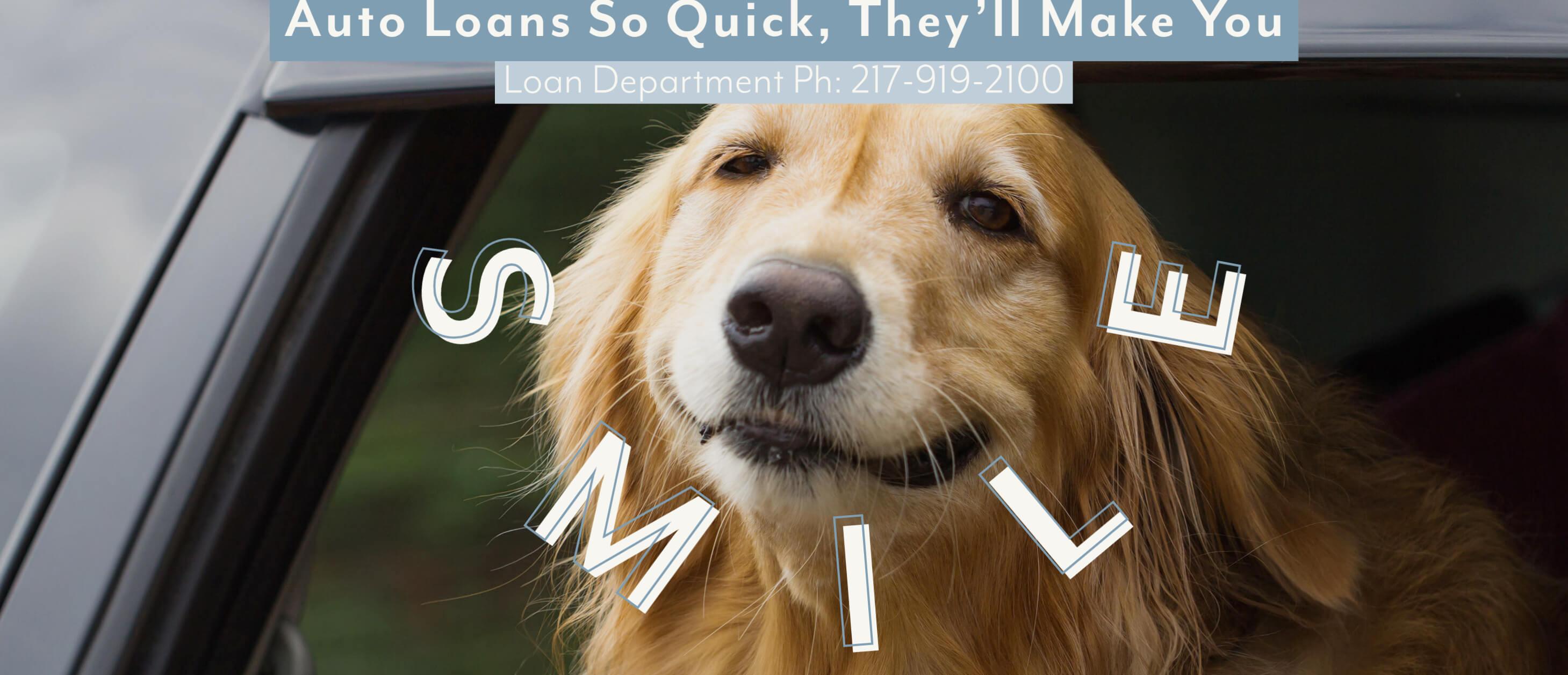 Auto Loans (dog)