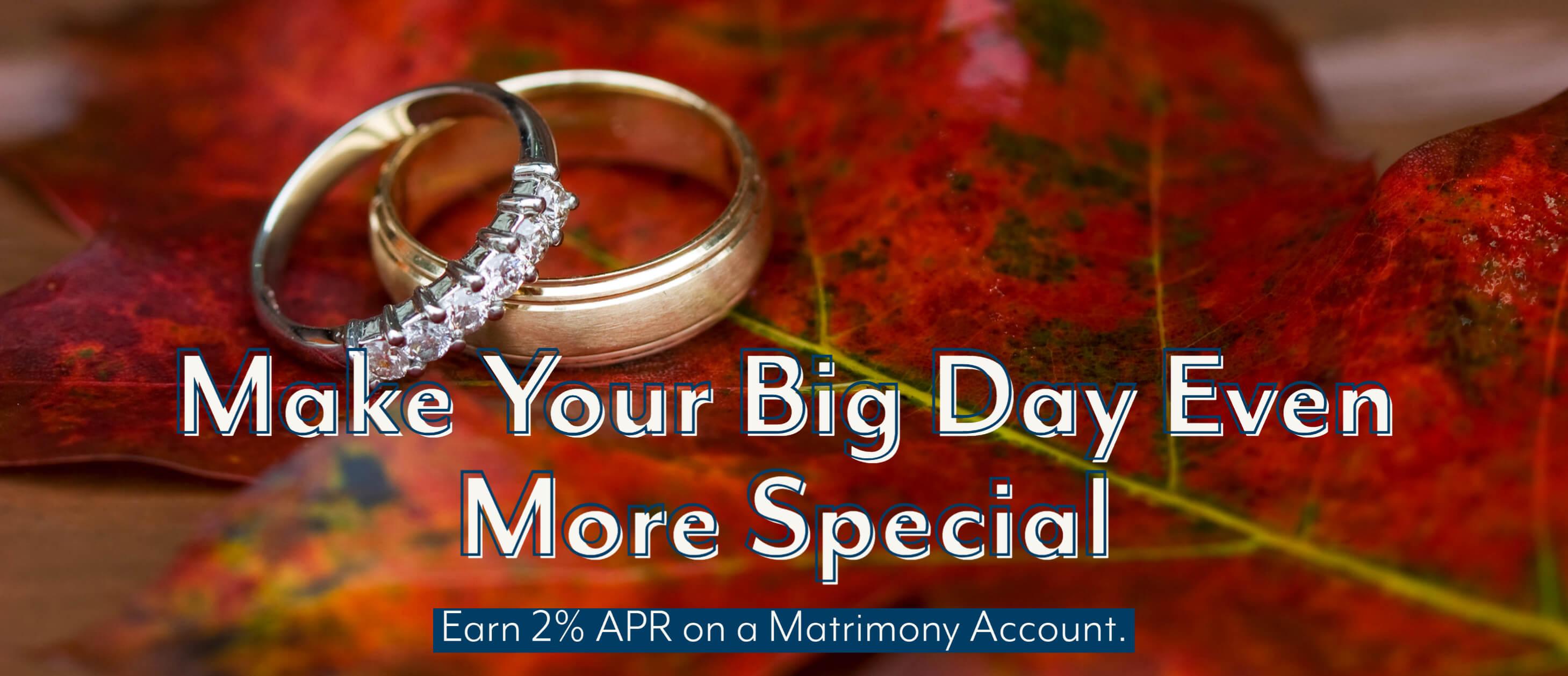 Matrimony Accounts - August