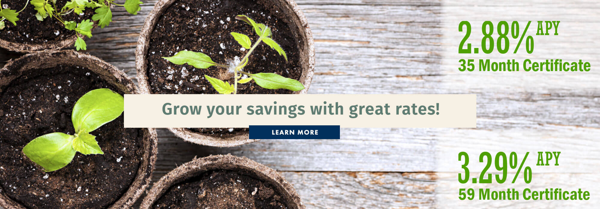 Grow your savings with great rates!