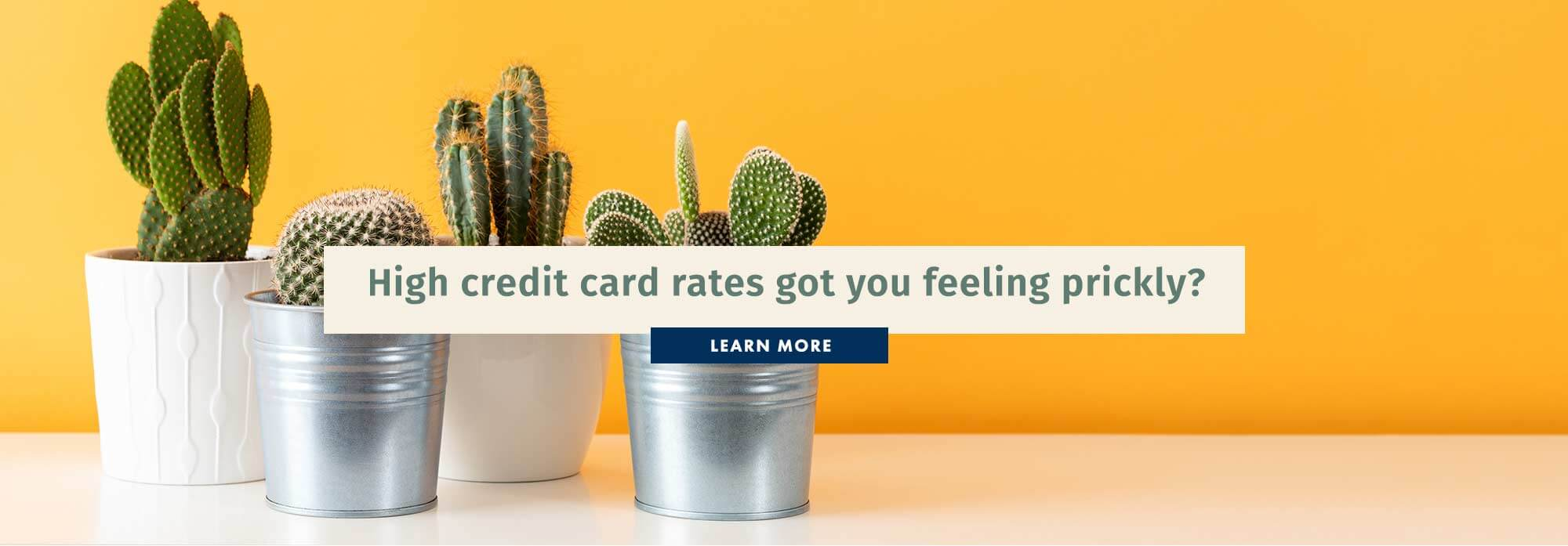 High rates got you feeling prickly?