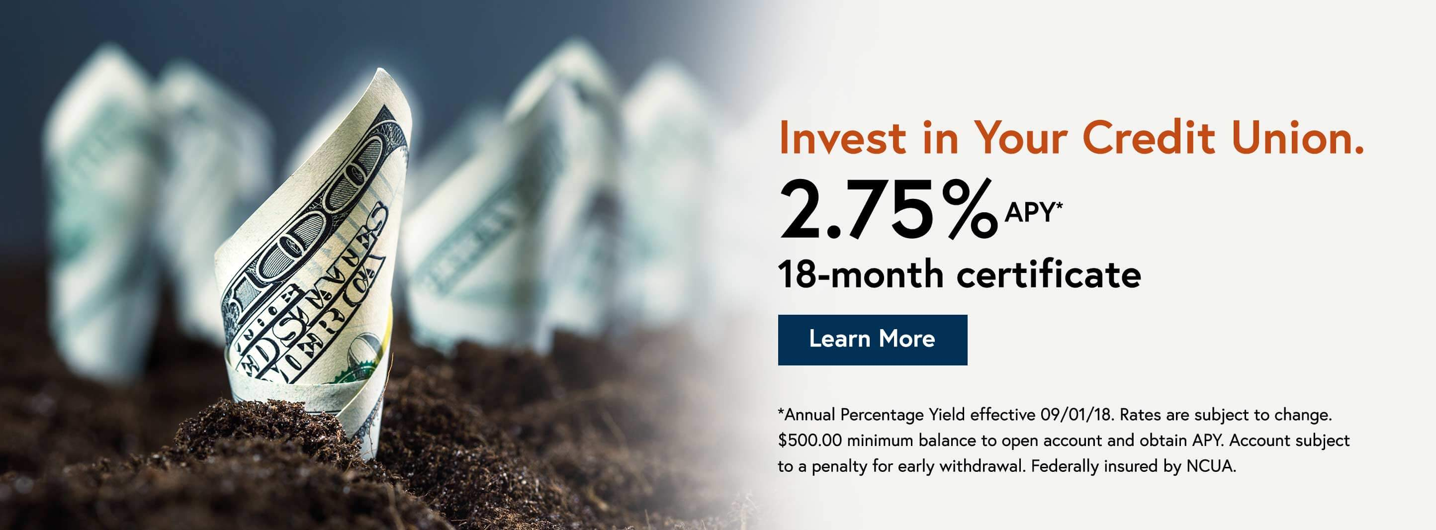 Invest in Your Credit Union.   2.75% APY* 18-month certificate. Learn More.