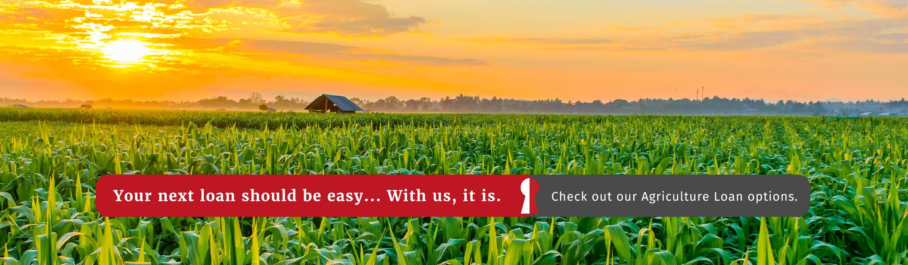 Your next loan should be easy. With us, it is. Check out our agriculture loan options.