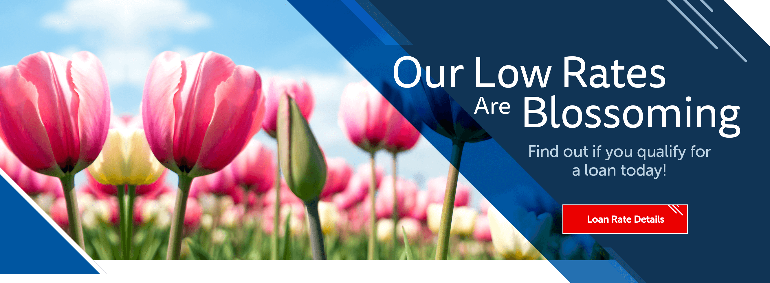 Our Low Rates Are Blossoming. Find out if you qualify for a loan today! Loan Rate Details